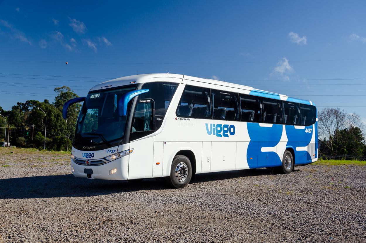 Viggo-(2)