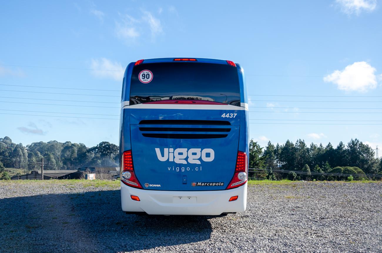 Viggo-(4)