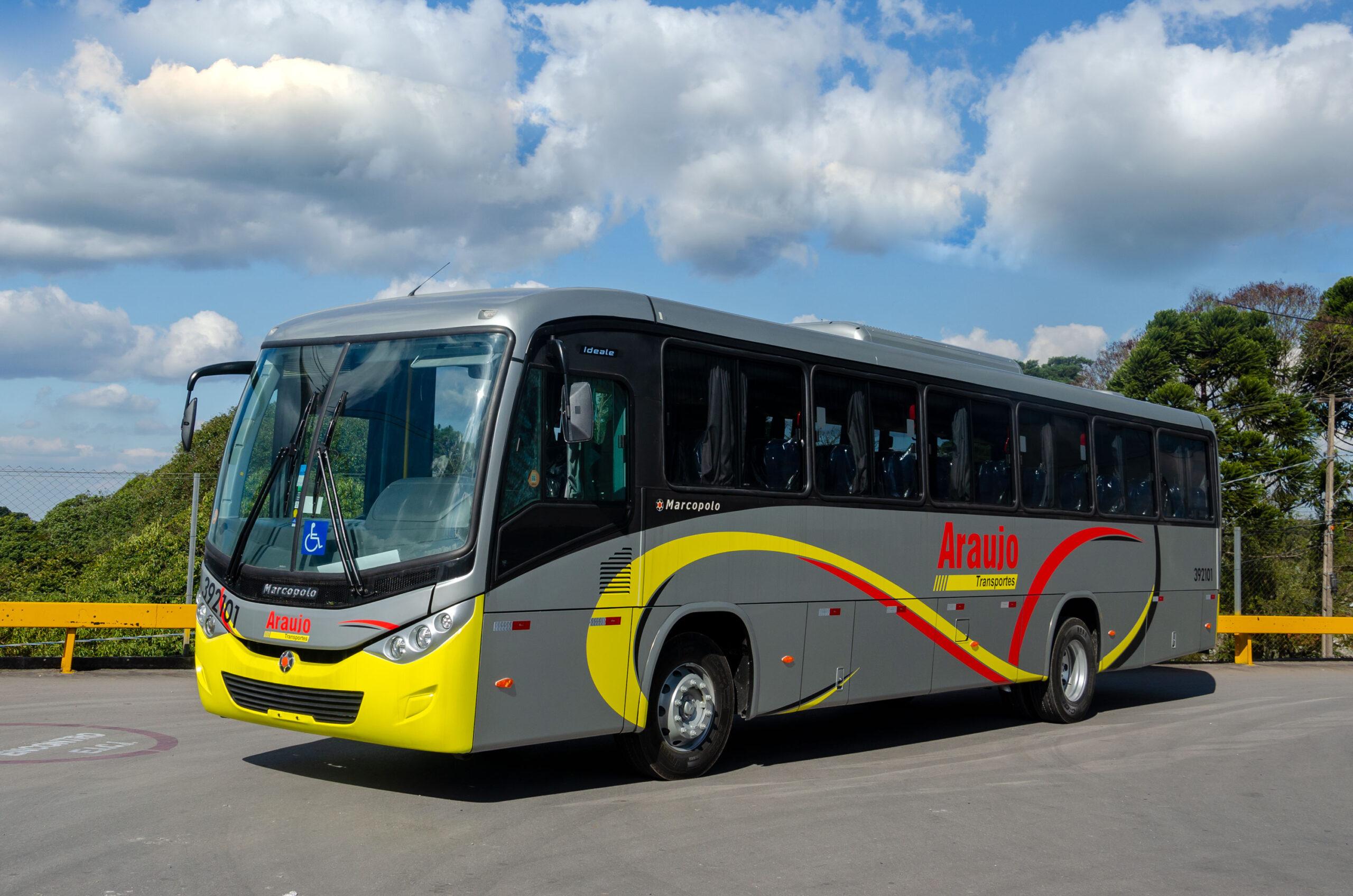 Araujo-Transportes-(2)